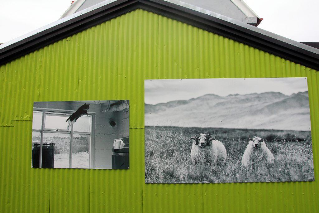 incontournables-islande-fotografi