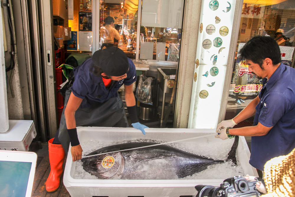 japon_insolite_tsukiji_fish_market_thon