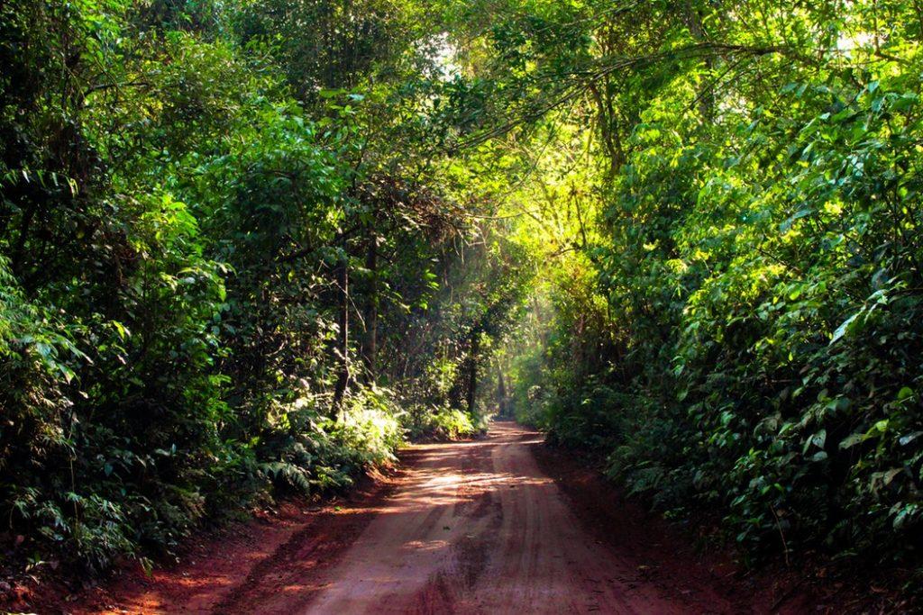 park-national-de-iguaçu-brésil